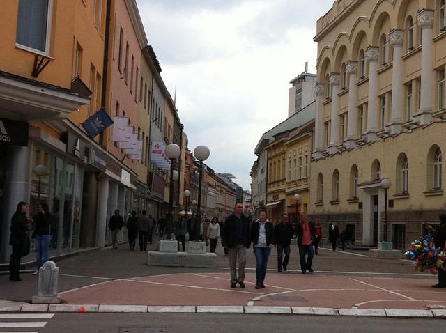Tanja Vukša: Republika Srpska – obrisi socijalnog stanja